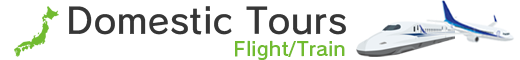 Domestic Tours Flight Train