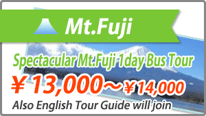 Domestic Tour Mt.Fuji
