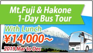 MtFuji Hakone 1day bus Tour